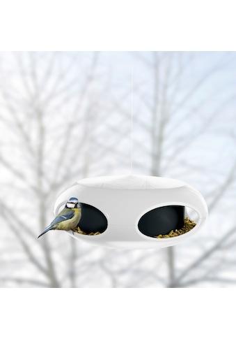 KOZIOL Vogelhaus »Vogelfutterhaus pi:p *« kaufen