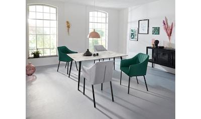 INOSIGN Esstisch »Tegan«, mit einem Metallgestell, in verschiedenen Tischgrößen, mit... kaufen