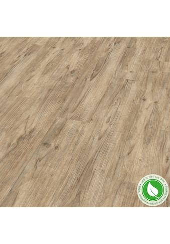 EGGER Designboden »GreenTec EHD025 Carpio Pinie«, 7,5mm, 1,995m² kaufen