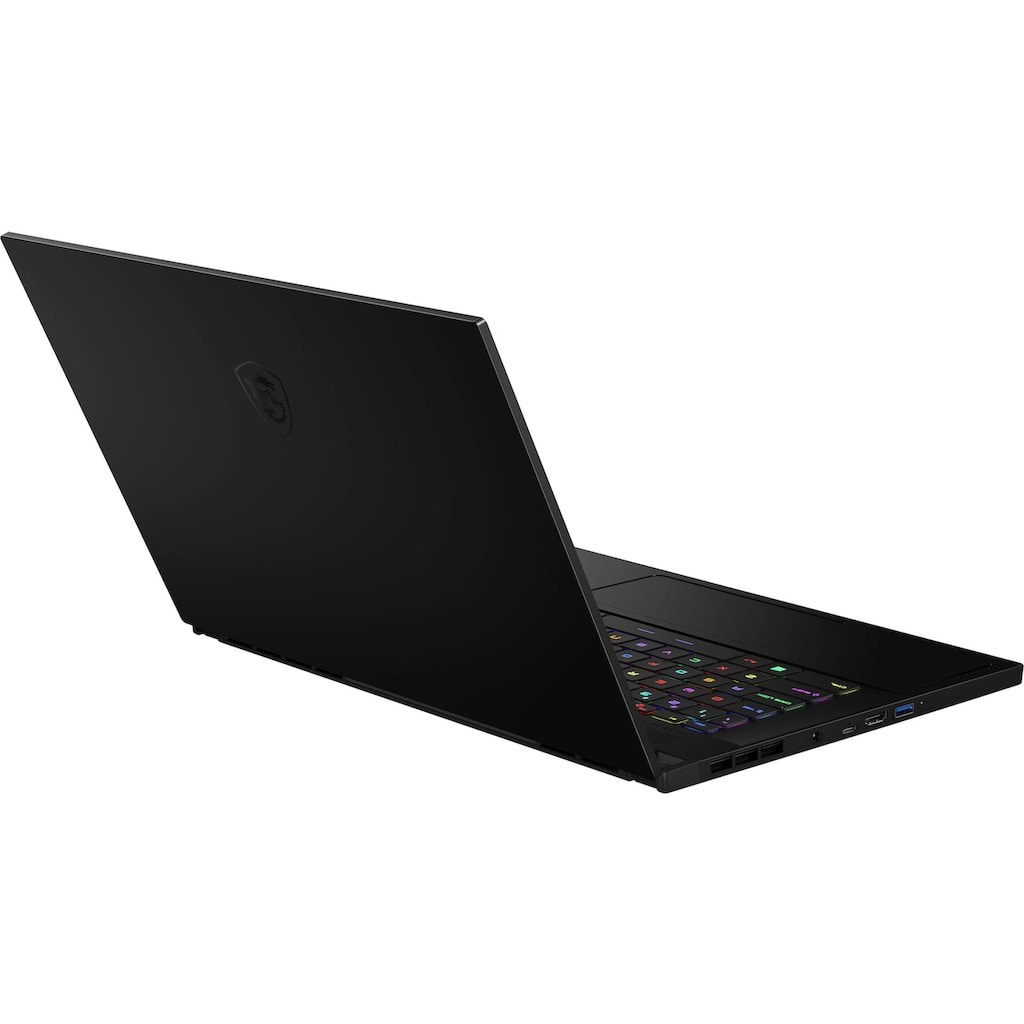 MSI Gaming-Notebook »GS66 Stealth 10UH-274«, (2000 GB SSD)