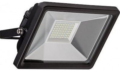 Goobay LED Außen »Flutlichtstrahler 30 W« kaufen
