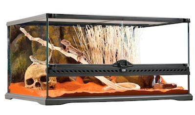 Exo Terra Terrarium, BxTxH: 63,5x48,5x35 cm kaufen
