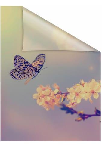LICHTBLICK ORIGINAL Fensterfolie »Schmetterling Blüte«, 1 St., blickdicht,... kaufen