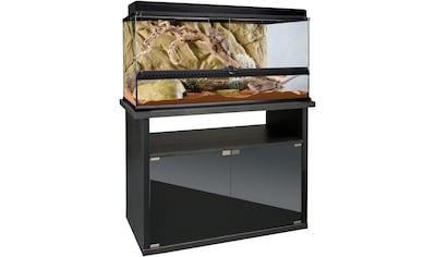 Exo Terra Terrarium, BxTxH: 90,5x46,5x115,5 cm, mit Unterschrank kaufen