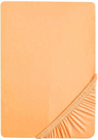 Biberna Spannbettlaken »Pepe«, weicher Frottee-Stretch kaufen