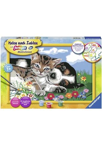 Ravensburger Malen nach Zahlen »Tierfreundschaft«, Made in Europe, FSC® - schützt Wald... kaufen