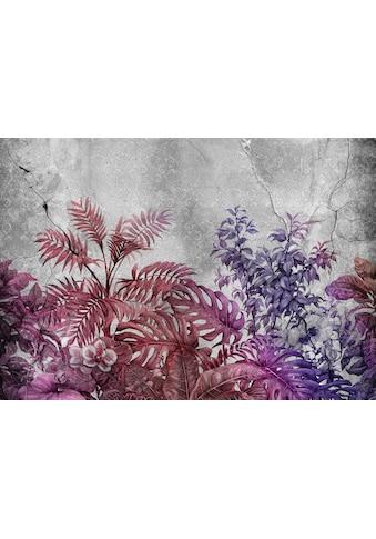 Consalnet Vliestapete »Violette Pflanzen/Beton«, floral kaufen