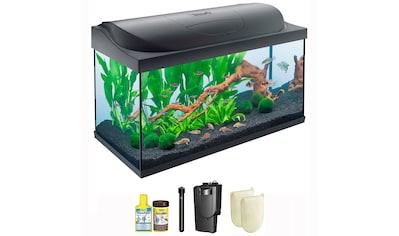 TETRA Aquarien - Set »Starter Line 105 LED«, 105 Liter, BxTxH: 78x37x49 cm, schwarz kaufen