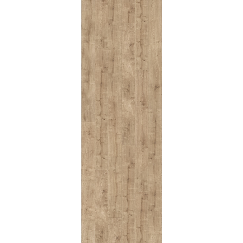 PARADOR Laminat »Basic 600 - Schlossdiele Eiche Geschliffen«, 2200 x 243 mm, Stärke: 8 mm