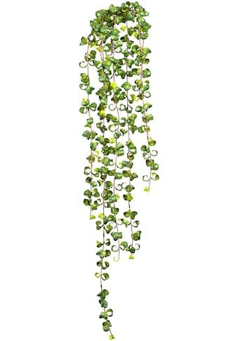 Creativ green Kunstranke »Ficus Barock Blatthänger« (1 Stück) kaufen
