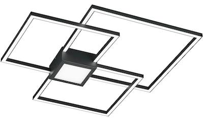 TRIO Leuchten LED Deckenleuchte »HYDRA«, LED-Board, 1 St., Warmweiß, LED Deckenlampe kaufen