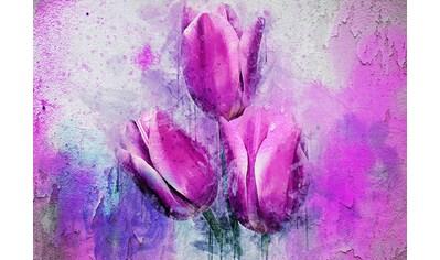 CONSALNET Papiertapete »Rosa Tulpen«, in verschiedenen Größen kaufen