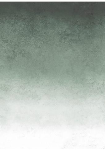 Fototapete »Faded«, Grün, 200x280 cm kaufen