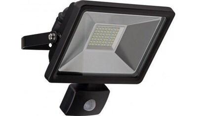 Goobay LED Außen - Flutlichtstrahler »mit Bewegungsmelder 30 W« kaufen