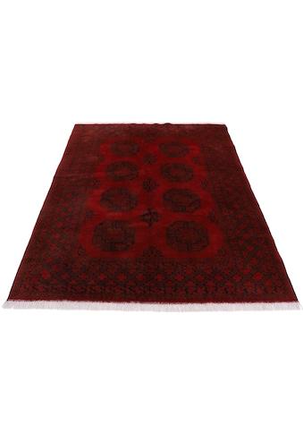 Woven Arts Orientteppich »Afghan Akhche«, rechteckig, 10 mm Höhe, handgeknüpft, Wohnzimmer, reine Wolle kaufen