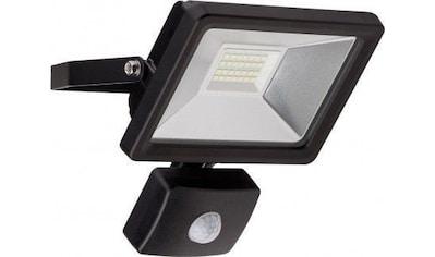Goobay LED Außen - Flutlichtstrahler »mit Bewegungsmelder 20 W« kaufen