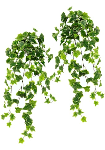 I.GE.A. Kunstpflanze »Efeuhänger«, 2er Set kaufen