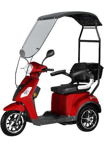Didi THURAU Edition Elektromobil »3 - Rad Bologna mit Wind - und Wetterschutz 25 km/h«, 1000 W, 25 km/h (mit Topcase) kaufen