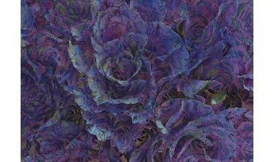 CONSALNET Papiertapete »Violette Blumen«, in verschiedenen Größen kaufen