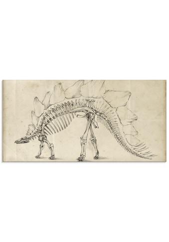 Artland Glasbild »Dinosaurier Lehre III« kaufen