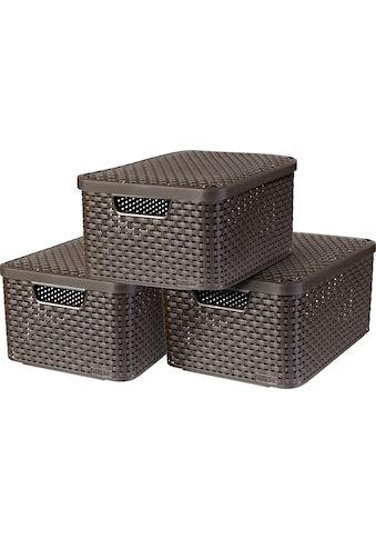 Curver Aufbewahrungsbox »Style Box M«, (Set, 3 St.), dunkelbraun kaufen