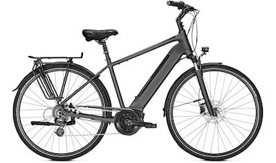 Raleigh E - Bike »Boston 9«, 9 Gang Shimano Alivio Schaltwerk, Kettenschaltung, Mittelmotor 250 W kaufen