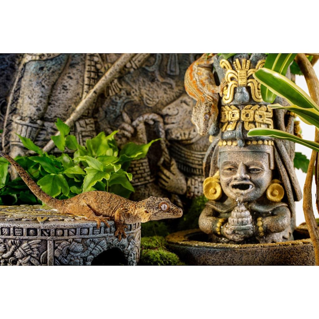 Exo Terra Terrariendeko »EX Aztec Wasserfall«