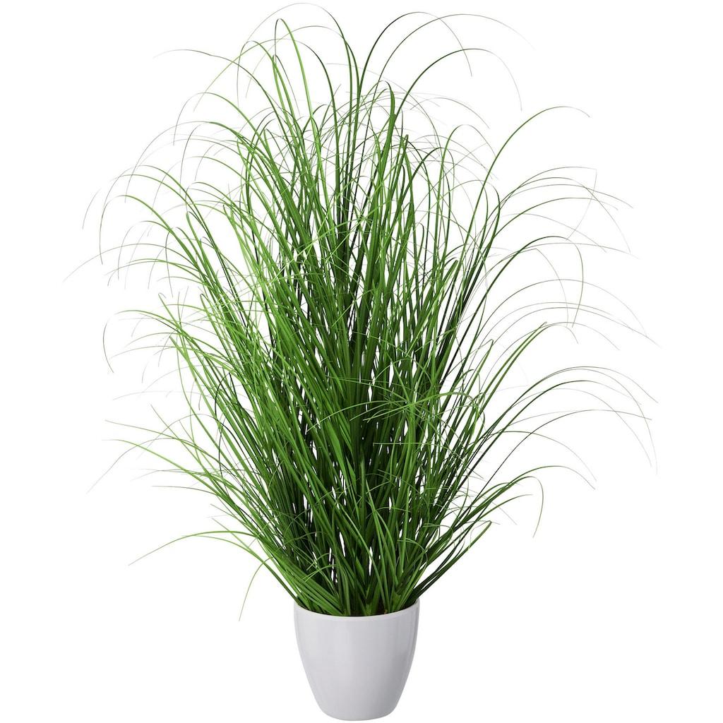 Creativ green Kunstgras »Grasbusch«, im dekorativen Kunststofftopf