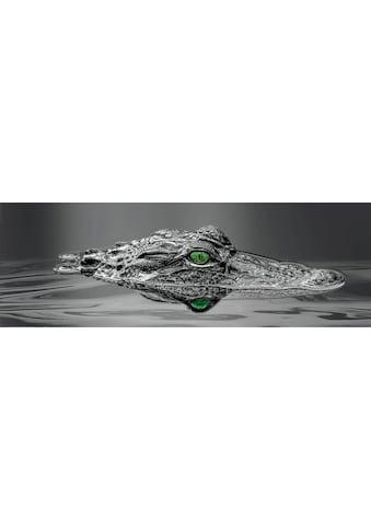 Reinders! Deco-Panel »Alligator Eyes«, 156/52 cm kaufen