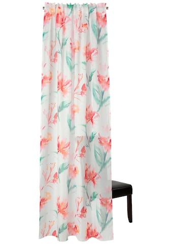 Neutex for you! Vorhang »Suna«, HxB: 245x140, Schal mit verdeckten Schlaufen kaufen