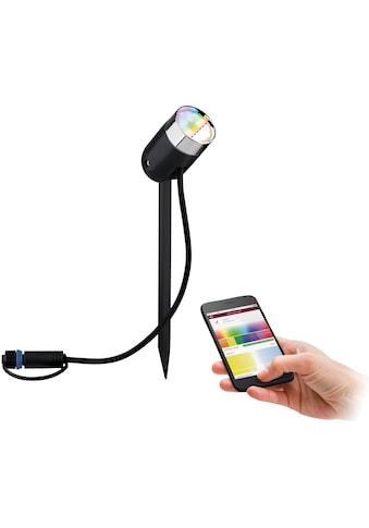Paulmann,LED Gartenstrahler»Outdoor Plug & Shine color Spot Pike«, kaufen