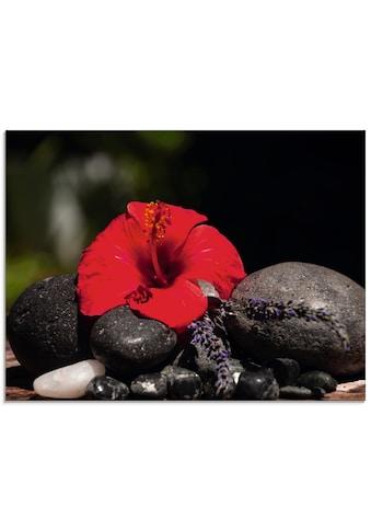 Artland Glasbild »Hibiskus Stillleben« kaufen