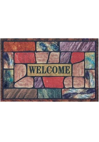 DELAVITA Fußmatte »Welcome bunt«, rechteckig, 6 mm Höhe, Schmutzmatte, mit Spruch, In-... kaufen