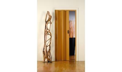 Falttür »Monica«, BxH: 83x204 cm, Eichefarben-Pastell ohne Fenster kaufen