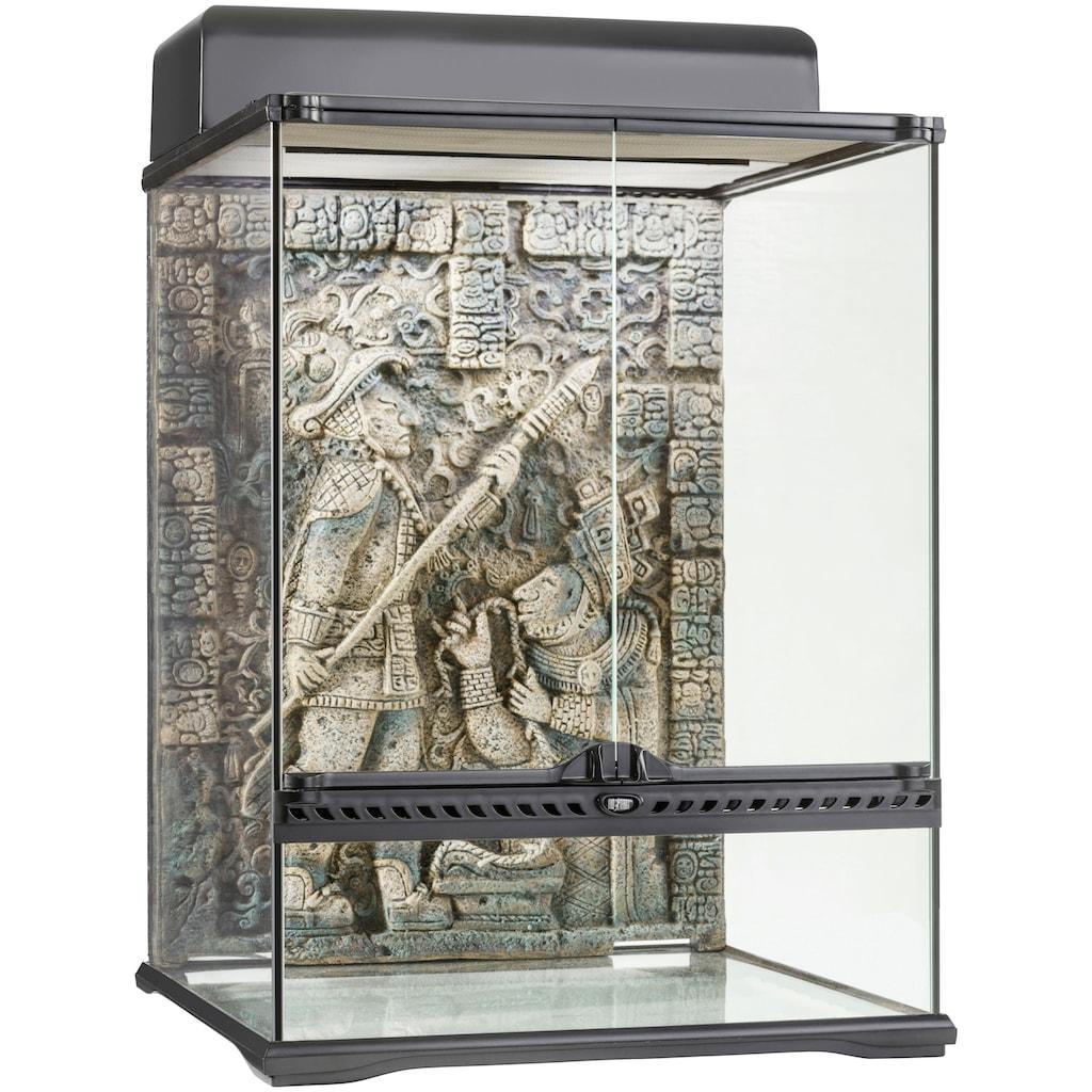 Exo Terra Terrarium »Aztec«, BxTxH: 45x45x60 cm