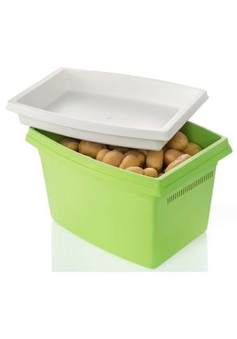 Ruco Aufbewahrungsbox, (Set, 2 tlg.), für Kartoffeln, mit Deckel kaufen