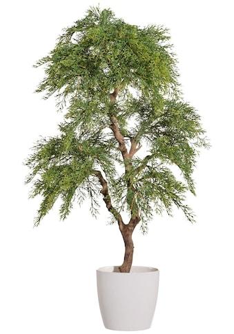 Creativ green Kunstbaum »Zypresse« (1 Stück) kaufen