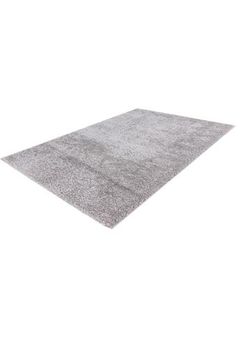 Hochflor - Teppich, »Emilia 250«, Obsession, rechteckig, Höhe 26 mm, maschinell gewebt kaufen