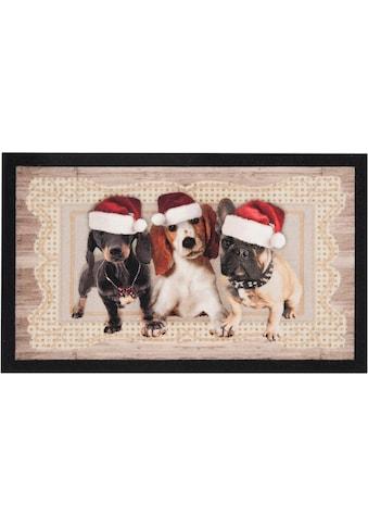 HANSE Home Fußmatte »Christmas Dogs II«, rechteckig, 7 mm Höhe, Schmutzfangmatte, In-... kaufen