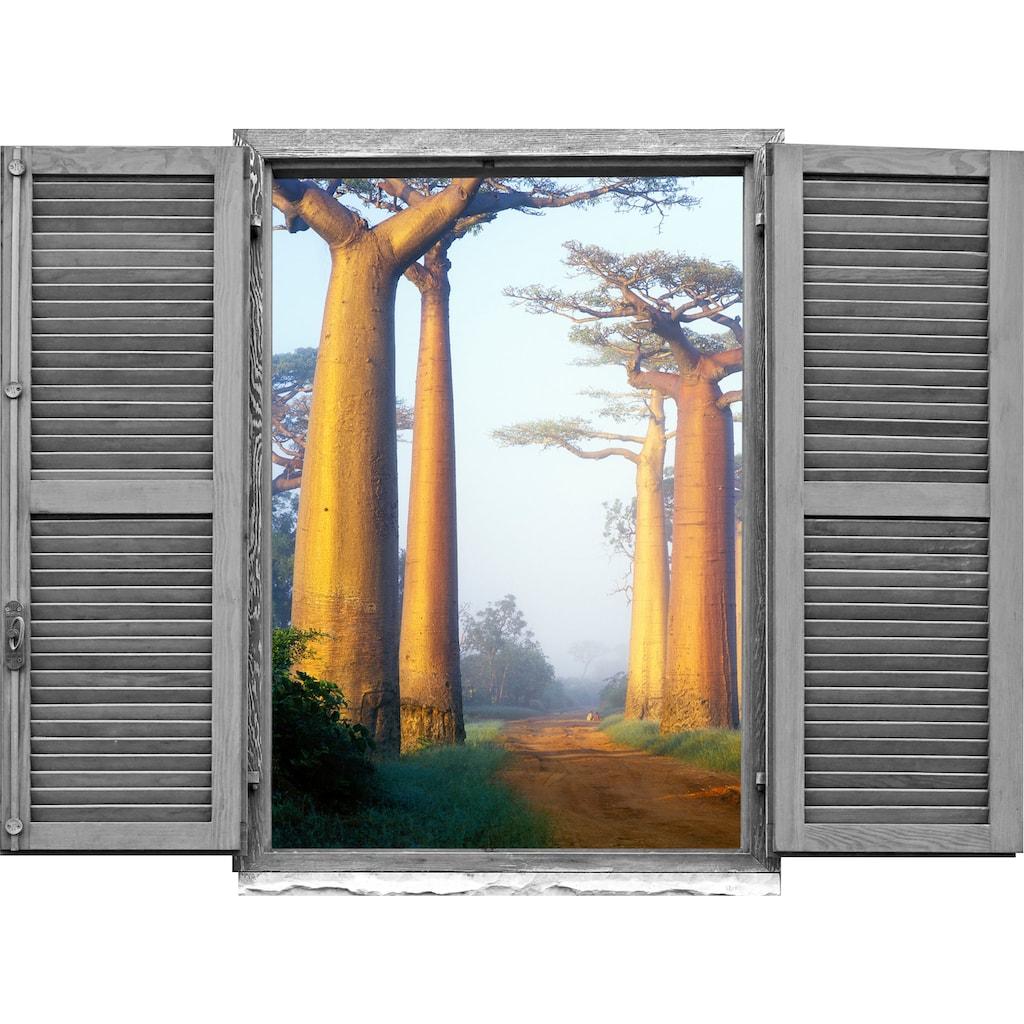 queence Wandtattoo »Affenbrotbäume«