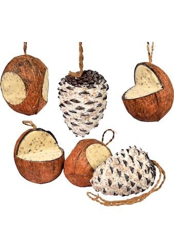 dobar Vogelfutter, 4 Kokosnüsse und 2 Zapfen kaufen
