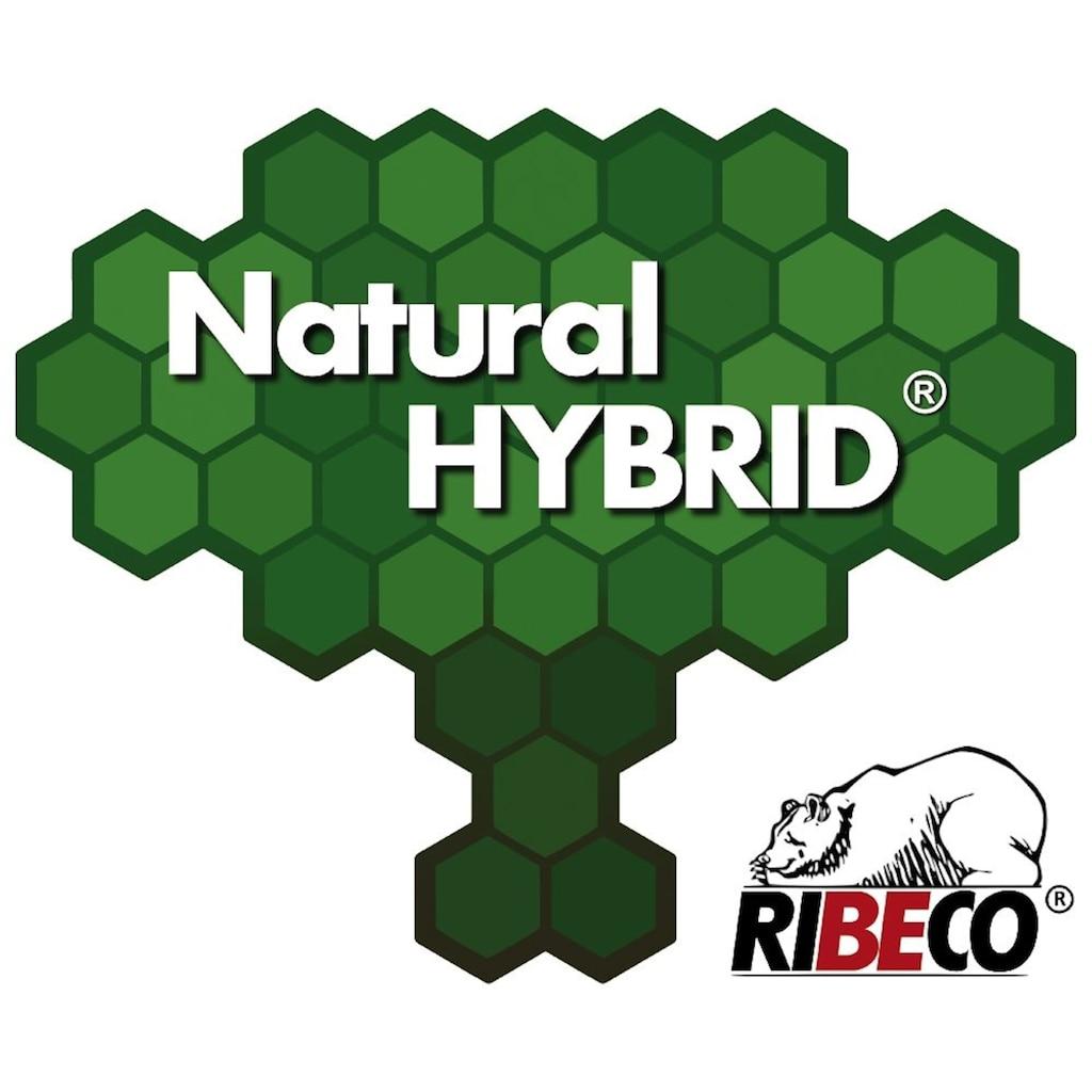 Hanse by RIBECO Federbettdecke + Kopfkissen »Natural HYBRID®«, (Spar-Set), Mit hoher Bauschkraft durch Daunen- & Fasermischung!