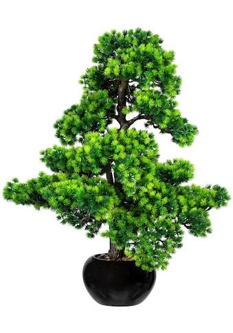 Creativ green Kunstbonsai »Bonsai Lärche« (1 Stück) kaufen