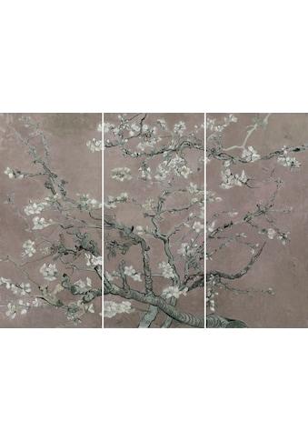 Reinders! Wandbild »Mandel Blütenbaum - Wandbild«, (Set) kaufen