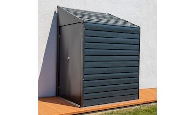 SPACEMAKER Stahlgerätehaus BxTxH: 203x124x208 cm kaufen