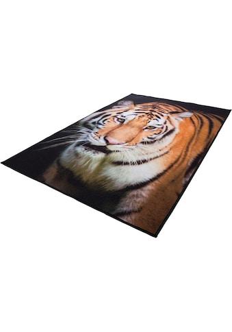 Andiamo Teppich »Tiger«, rechteckig, 4 mm Höhe kaufen