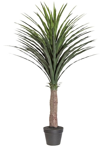 Creativ green Kunstpalme »Palme Yucca«, im Kunststofftopf kaufen