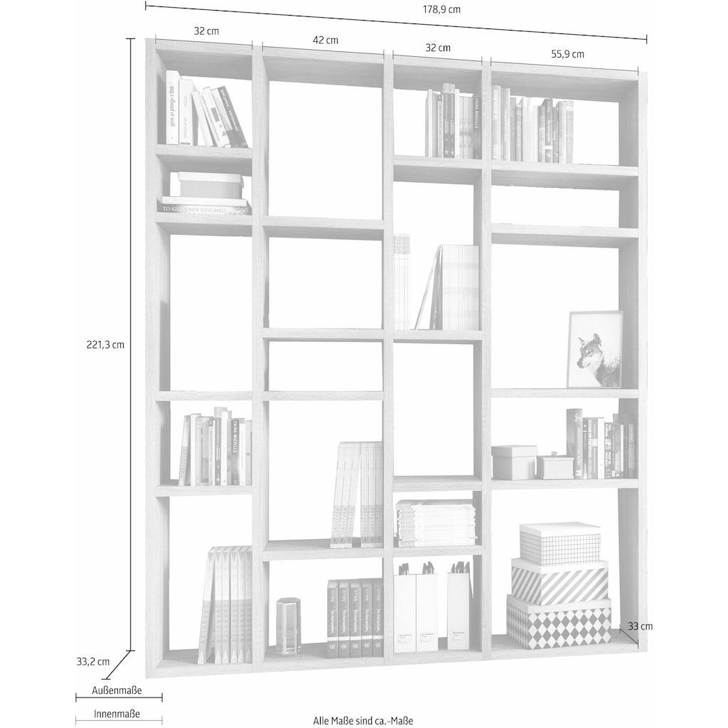 fif möbel Raumteilerregal »TORO 383«, Breite 179 cm