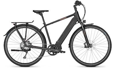 Raleigh E - Bike »Preston 10«, 10 Gang Shimano Deore Schaltwerk, Kettenschaltung, Mittelmotor 250 W kaufen