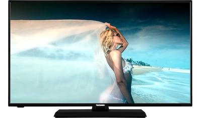 Telefunken D43F500M4CW LED - Fernseher (108 cm / (43 Zoll), Full HD, Smart - TV kaufen